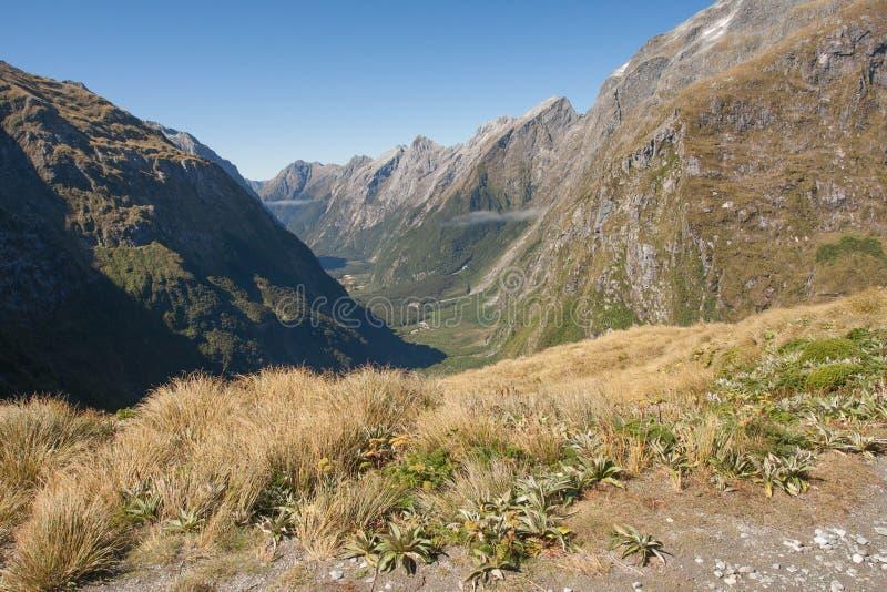 """Una vista escénica de la montaña en pista de Milford del †del paso de Nueva Zelanda - de Mackinnon """" foto de archivo"""