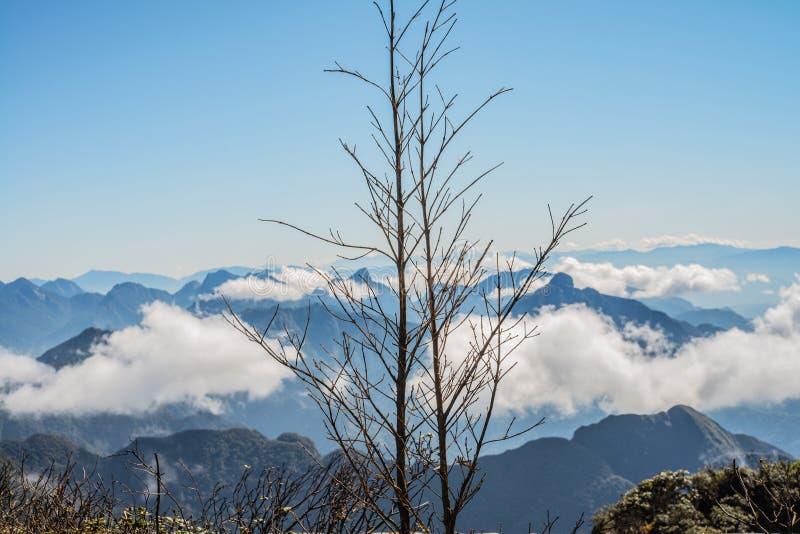 Una vista escénica del cielo en la tierra, la montaña más alta de Fansipan, Sapa, Vietnam fotos de archivo