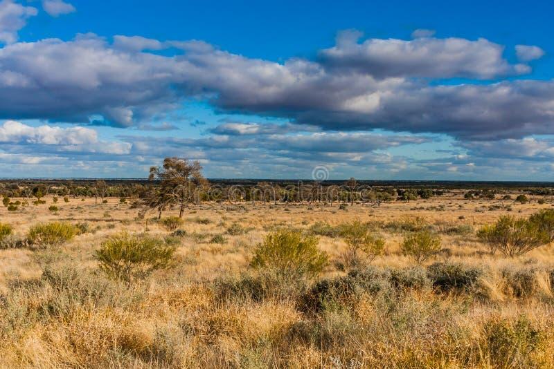 Una vista escénica del interior australiano, sur de Australia fotos de archivo libres de regalías