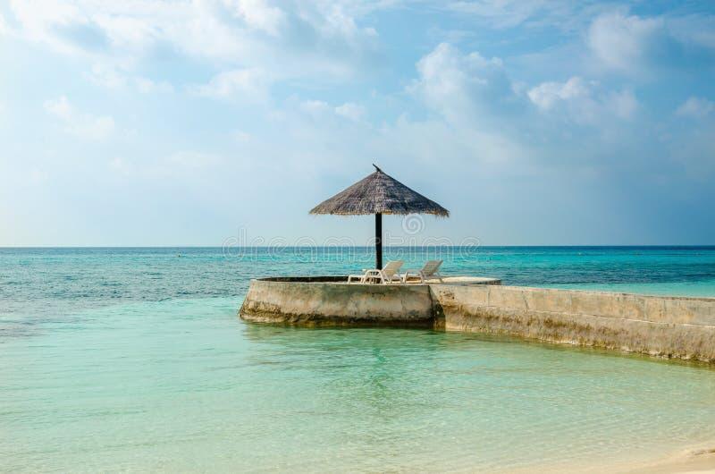 Una vista esotica di un ombrello della palma su un capo che trascura il mare immagini stock
