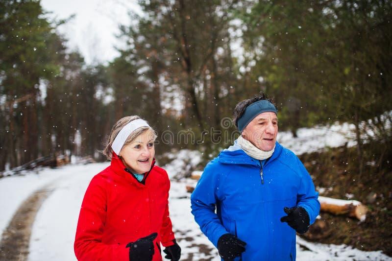 Una vista frontale delle coppie senior che pareggiano in natura nevosa di inverno immagini stock libere da diritti