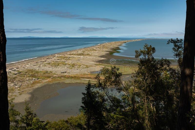 Una vista fuori allo sputo di Dungeness coperto di legname galleggiante sulla costa del nord della penisola olimpica a Washington fotografie stock