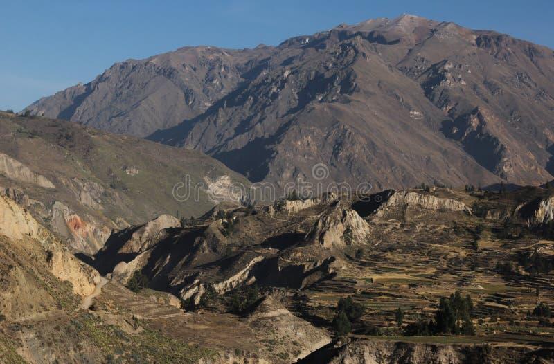 Una vista giù il canyon di Colca fotografia stock