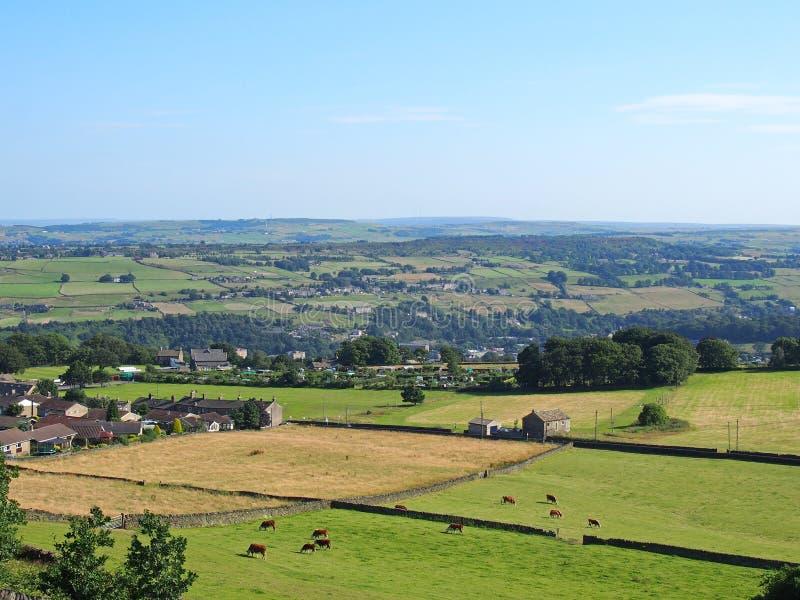 Una vista panorámica aérea del campo de West Yorkshire cerca luddenden con las vacas que pastan en prados y cortijos con el puebl fotos de archivo