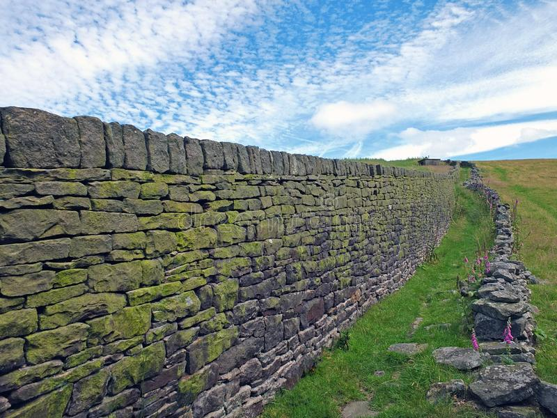una vista panorámica a lo largo de una gran pared de piedra seca recubierta de musgo que separa los prados de hierba en el campo  imagenes de archivo