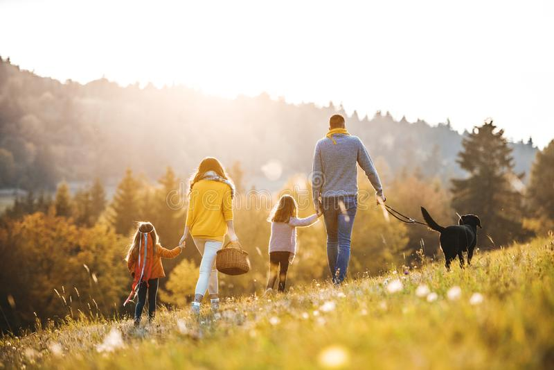 Una vista posterior de la familia con dos pequeños niños y un perro en un paseo en naturaleza del otoño fotografía de archivo