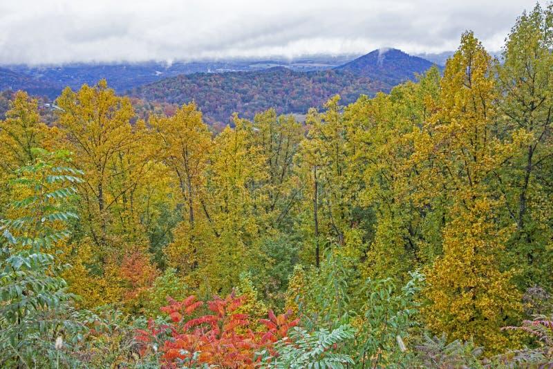 Una vista scenica di Great Smoky Mountains nei colori di caduta fotografie stock libere da diritti