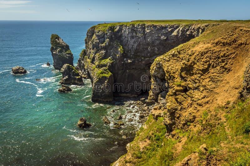 Una vista seguendo la linea rocciosa della costa della costa di Pembrokeshire, Galles fotografia stock