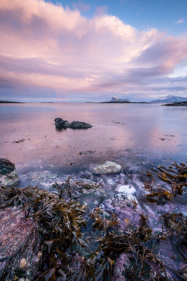 Una vista sul mare scenica in Sommaroy, Norvegia immagine stock libera da diritti