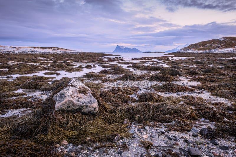 Una vista sul mare scenica in Sommaroy, Norvegia fotografia stock