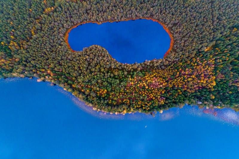 Una vista superiore aerea di due laghi in foresta