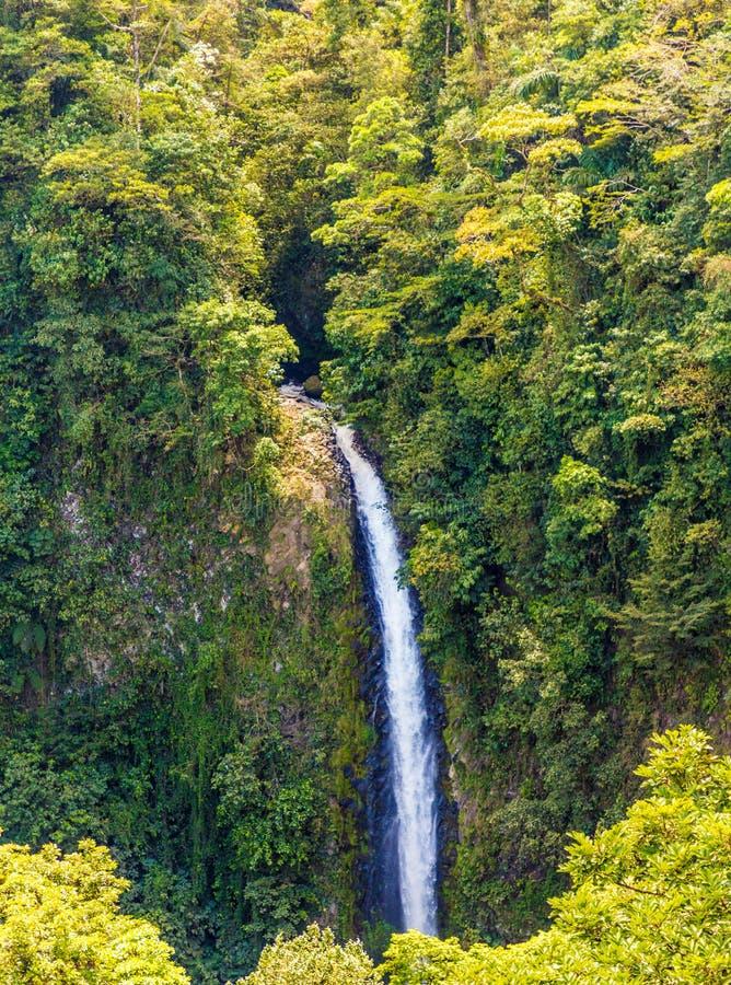Una vista tipica in Costa Rica fotografia stock libera da diritti