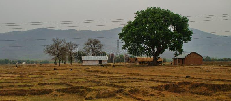 Una vita indiana degli agricoltori fotografia stock libera da diritti