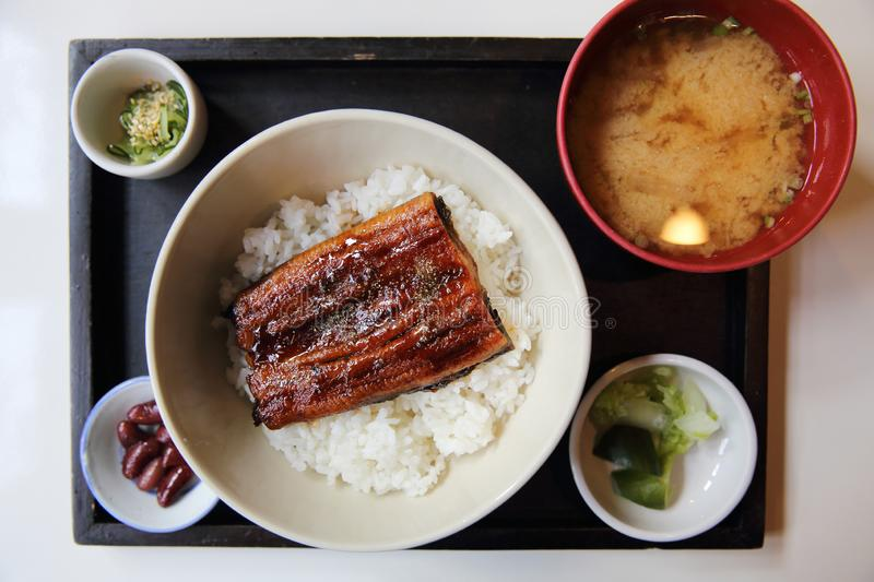 Unagi don , grilled eel with rice , Japanese food royalty free stock photos