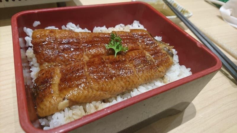 Unagi jugoso con arroz japonés de la perla fotos de archivo