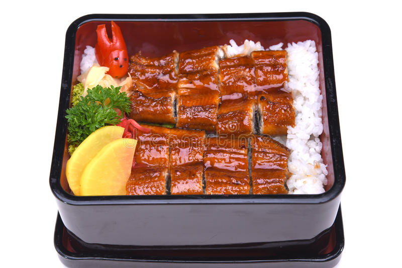 Unaju , Unagi don or Grilled eel on rice , isolated on white background (Clipping path) royalty free stock photography