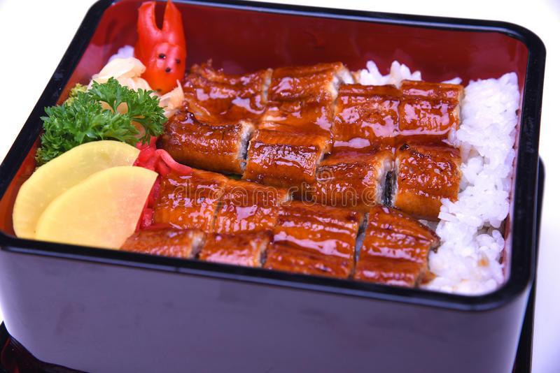 Unaju , Unagi don or Grilled eel on rice , Japanese Cuisine Close-up and selective focus point royalty free stock images