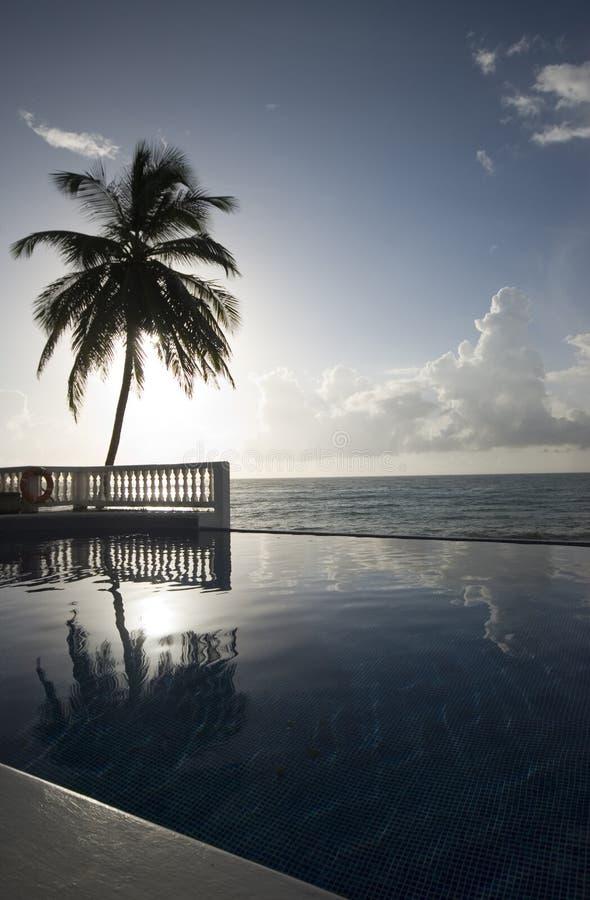 Unbegrenztheitspool mit karibischem Meer der Hin- und Herbewegung stockbilder