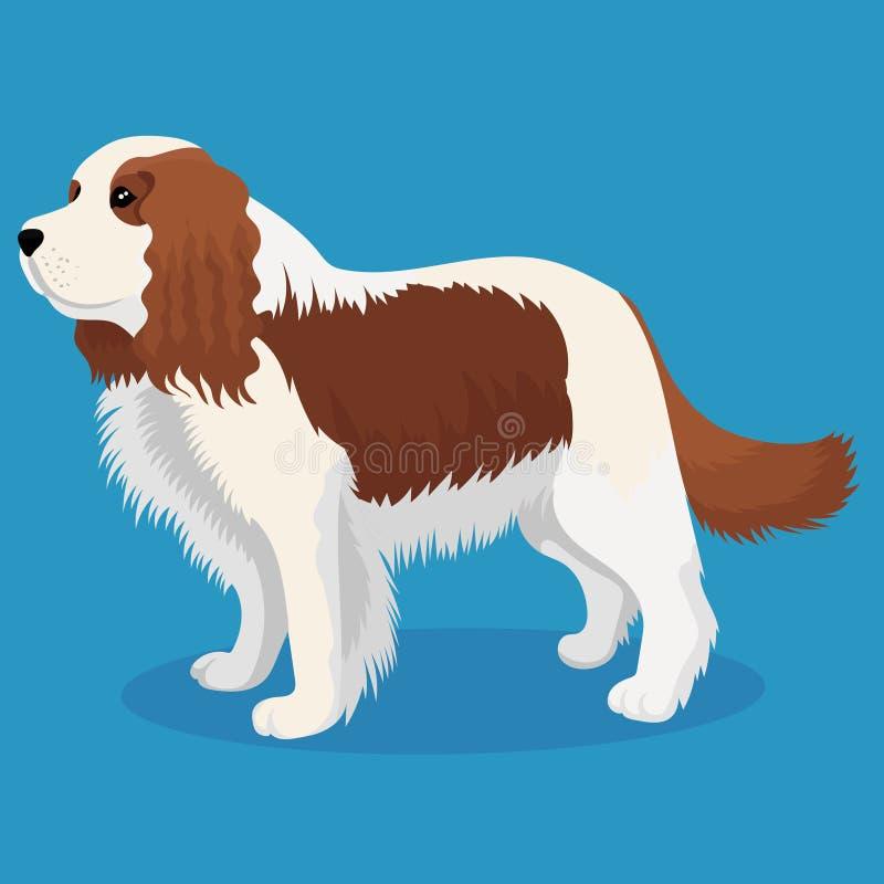 Unbekümmerter Königcharles Spanielhund vektor abbildung