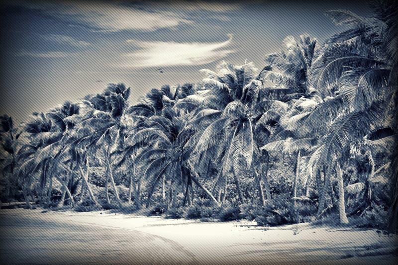 Unberührter tropischer Strand stock abbildung