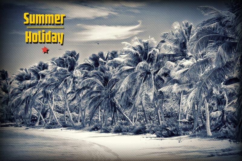 Unberührter tropischer Strand lizenzfreie abbildung