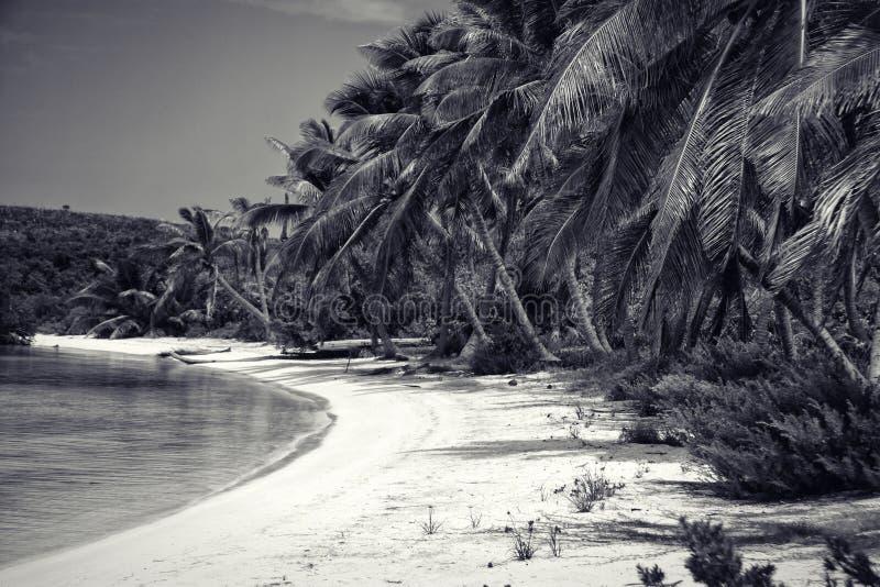 Unberührter tropischer Strand in Mexiko stockbild