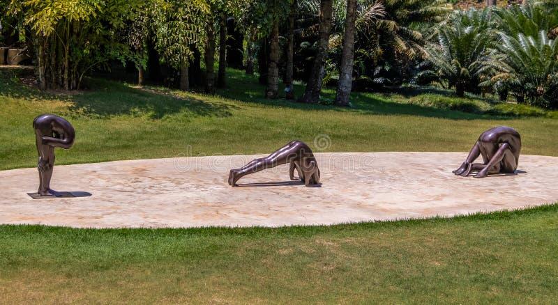 Unberechtigte Skulpturen durch Edgard de Souza bei Inhotim allgemeiner zeitgenössischer Art Museum - Brumadinho, Minas Gerais, Br stockfotografie