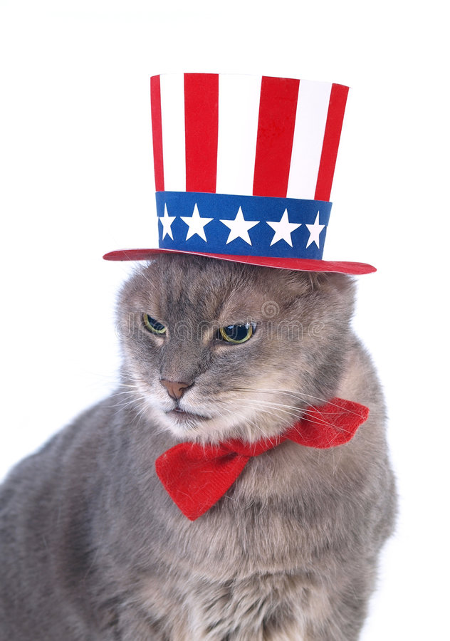 Download Uncle Sam Royalty Free Stock Photo - Image: 8287055