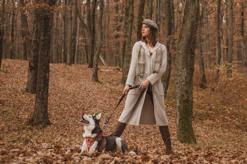 Unconditional love. Siberian husky favorite pet. Animal husbandry. Girl pretty stylish woman walking with husky dog royalty free stock photo