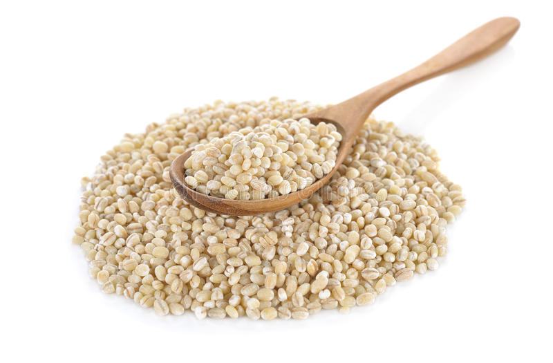 Uncooked barley grain seeds in wooden spoon and on white background royalty free stock image