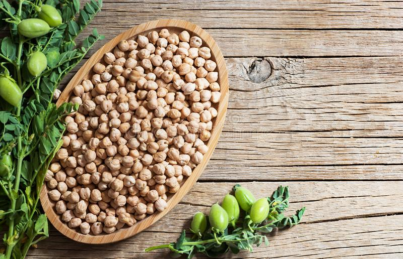Uncooked dried chickpeas with raw green chickpea pod plant on wooden table royalty free stock image