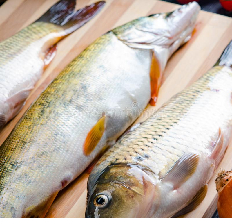 Uncooked fish on cutting board in meal preparation concept royalty free stock photography