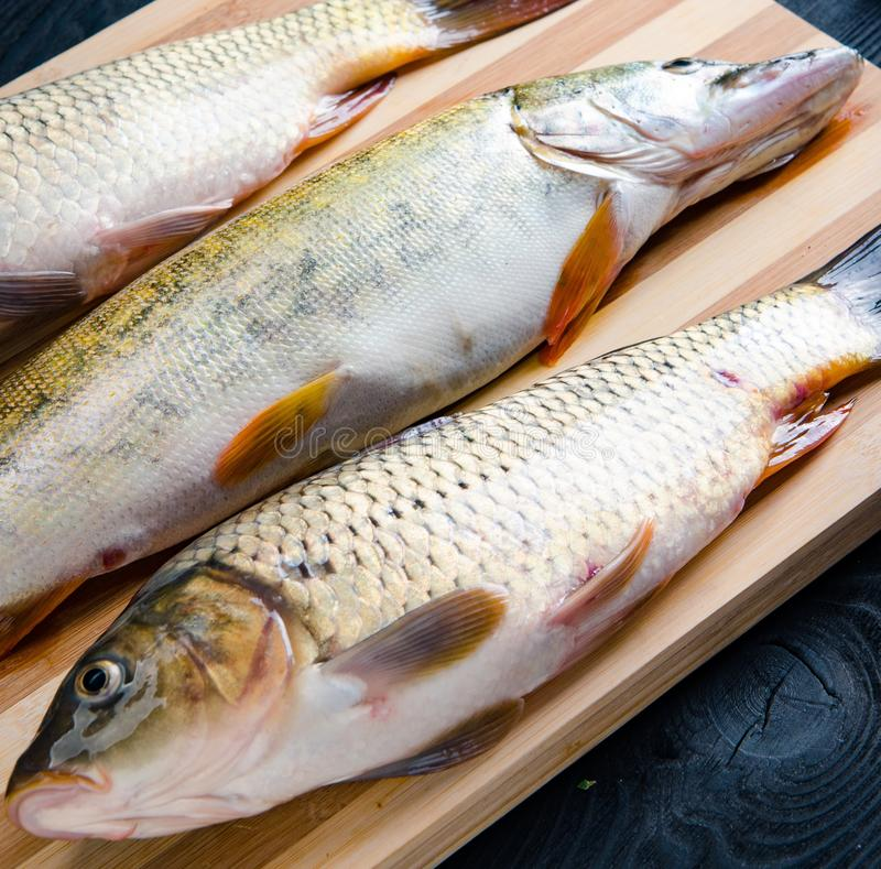 The uncooked fish on cutting board in meal preparation concept stock photo