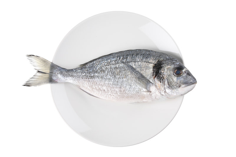 Download Uncooked Fish (sparus Auratus)on A Plate Stock Photo - Image of meal, dish: 7995894