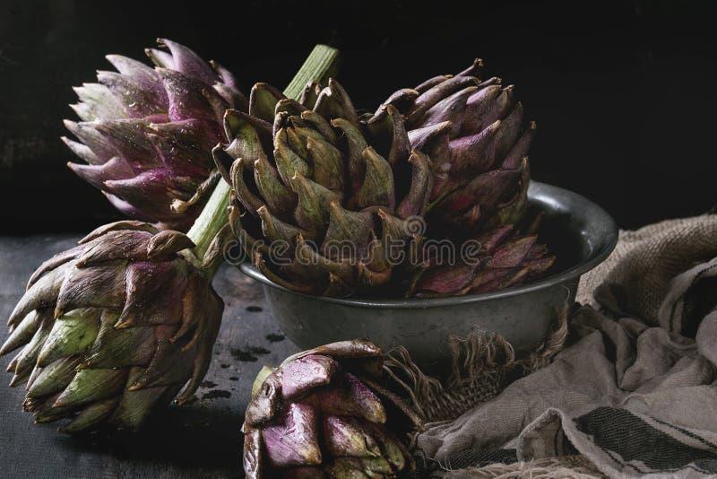 Uncooked purple artichokes stock photography