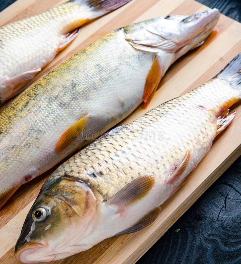 Uncooked ryba na tn?cej desce w posi?ku przygotowania poj?ciu fotografia royalty free