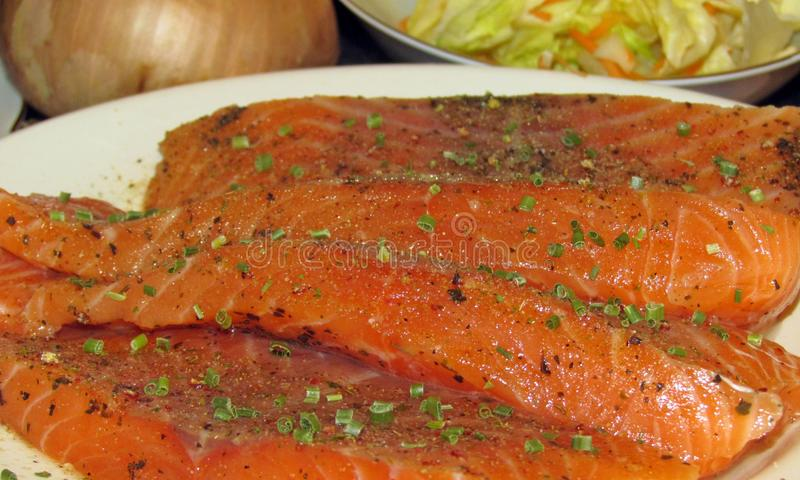 Uncooked salmon pieces royalty free stock images
