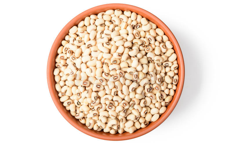uncooked white cow pea beans in the bowl royalty free stock photo