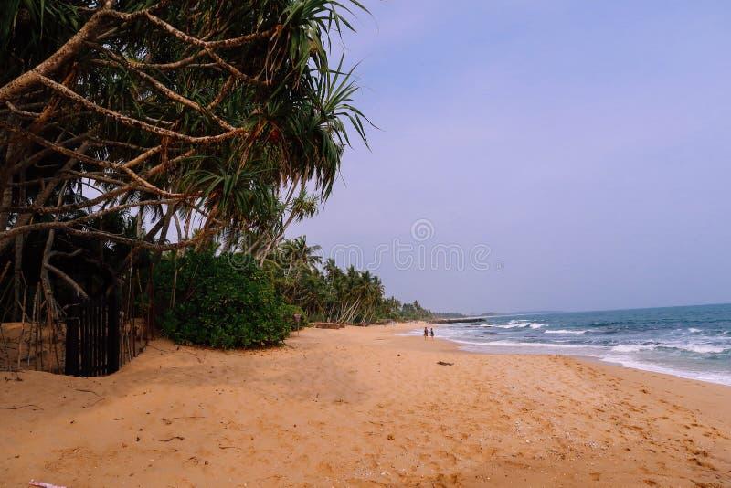 Uncrowded härlig strand i Sri Lanka royaltyfria foton