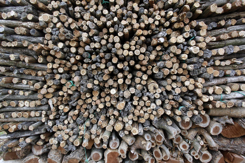Download Uncut firewood stock photo. Image of import, nature, production - 23929504