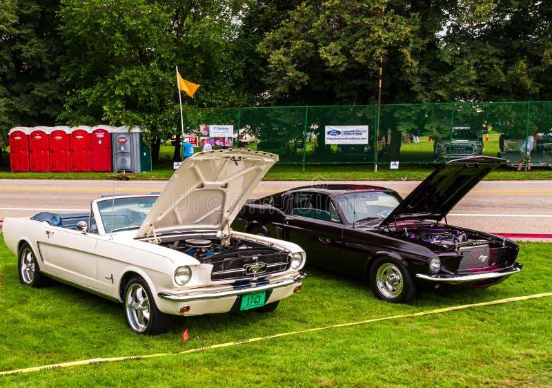 1964 und 68 Ford Mustangs 64 eine weiche Spitze lizenzfreie stockfotos