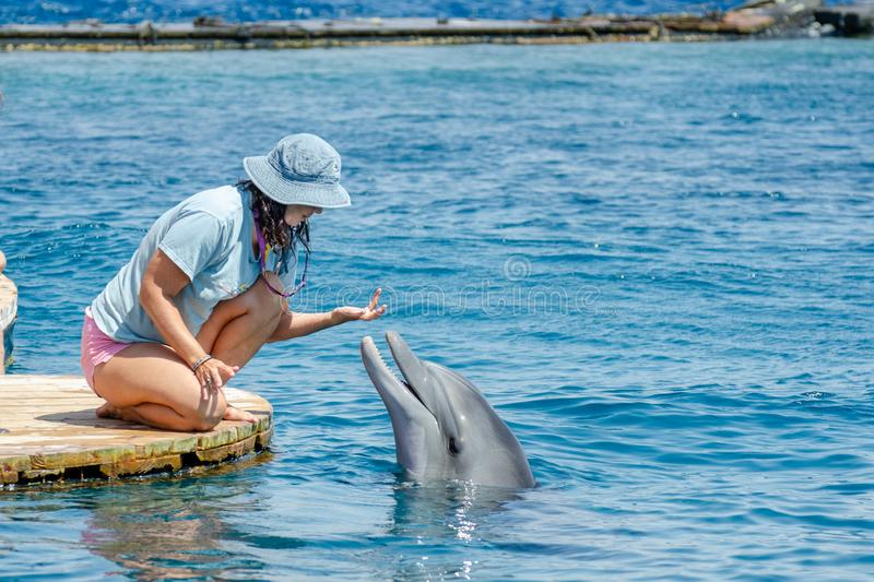 The undefined girl trainer with dolphin at the Dolphin Reef in Eilat, on the shores of the Red Sea stock image