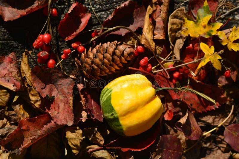 Under av höstmånaderna, Oktober, November royaltyfria foton