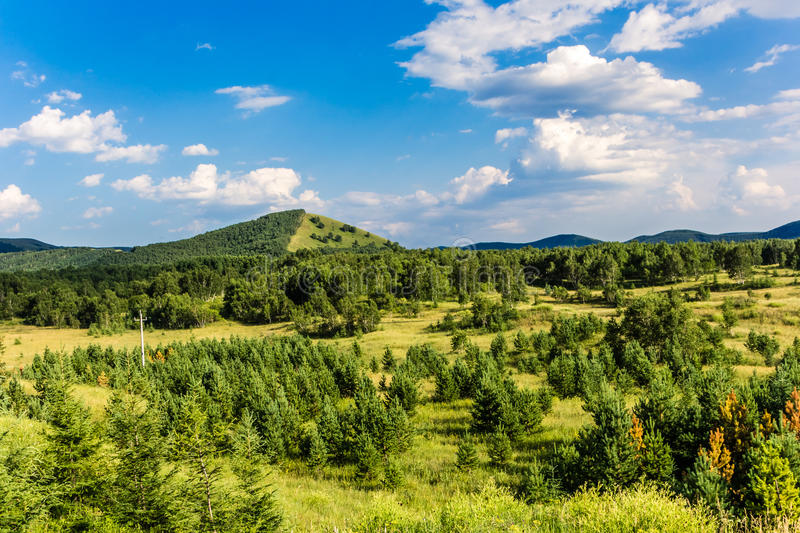 Under the blue sky of the mountains stock photography