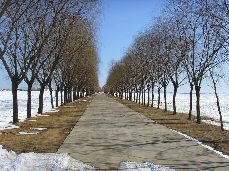 Under the blue sky, a road leading to a distant. In the north, a road leading to the distant, the road is coming out of the road at the foot of a firm pace stock photo