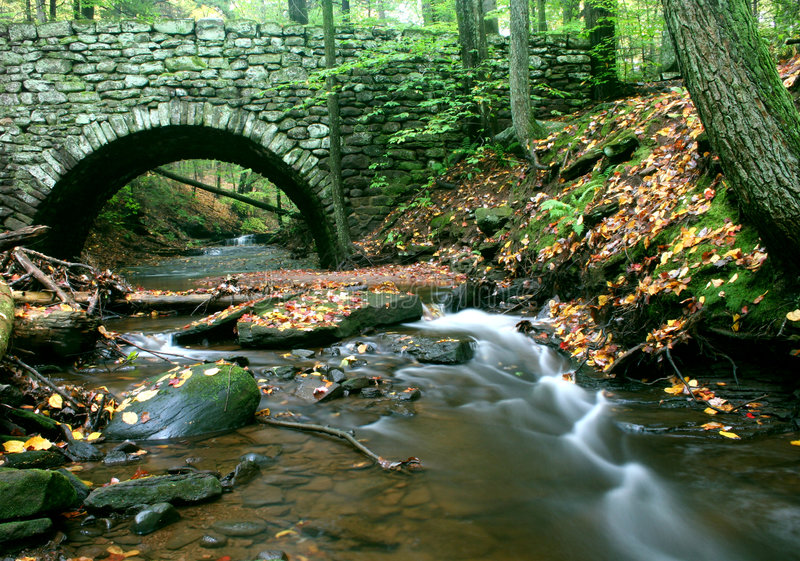 Download Under the Bridge stock image. Image of forest, arch, autumn - 1358803