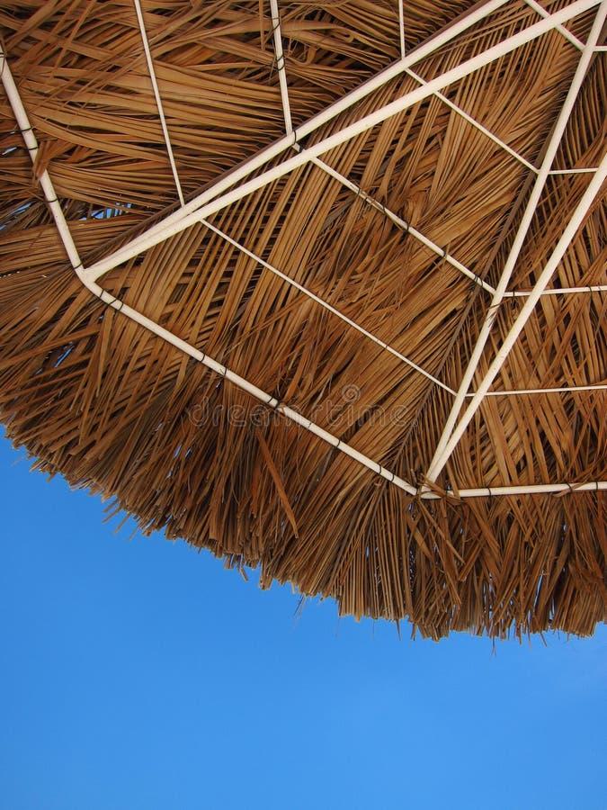 Download Under a Palapa's Shade stock image. Image of palapa, beach - 21267711
