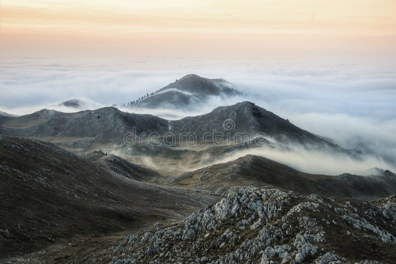 Under Paljenik-överkant av berget Vlasic royaltyfria foton