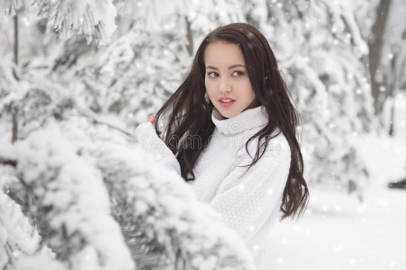 Under the Sun Frosty Scene. Beautiful brunette poring outdoor in winter stock images