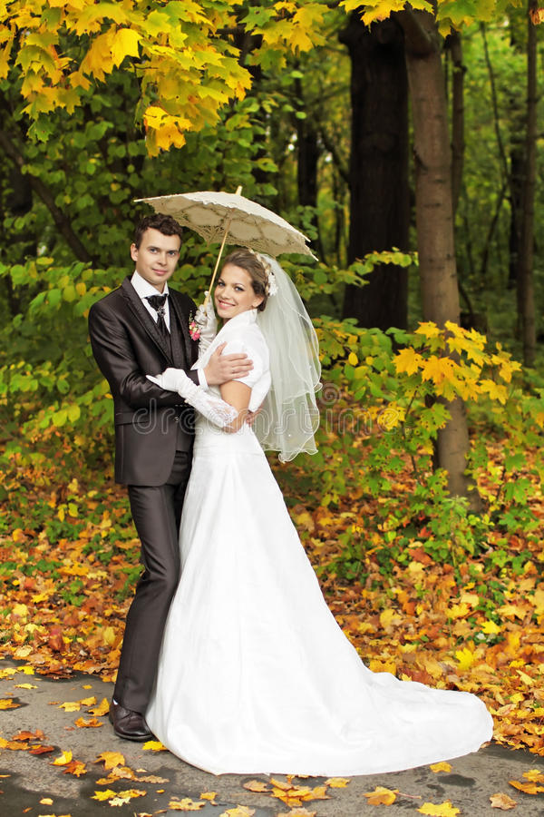 Download Under the umbrella stock photo. Image of garden, branches - 22356802